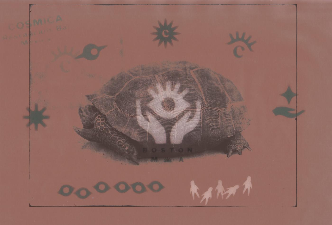 cosmica-cosmicaboston-boston-brewhall-thebeehive-jackbardy-vacaliebres-branding-mexican-mexico-taco-tacos-cla-mex-logo-eye-cosmiceye-god-beams