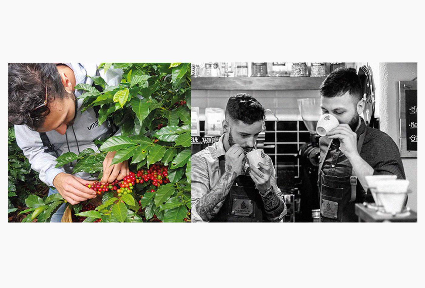 tazzepazze-tazze-pazze-caffetteria-gourmet-genova-coffee-specialty-brewing-andrea-cremone-barista-baristas-branding-vacaliebres-honduras